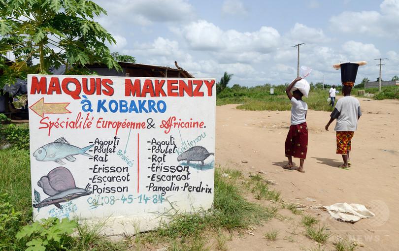 エボラ出血熱、22か国に発生リスク 「想定以上に広範」