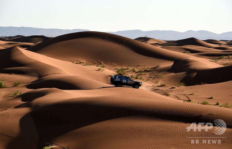 サハラ砂漠に壁を、トランプ氏提案にスペイン外相「どれほど広いか知っているか」