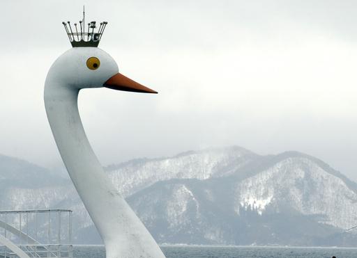 渡り鳥が飛来する冬の猪苗代湖