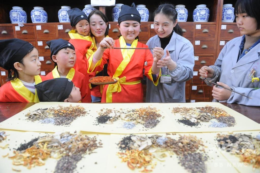 子どもたちが中国の伝統医学を体験 安徽で「国医節」のイベント