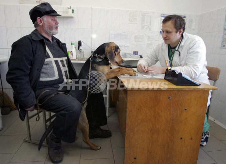 「動物用救急車にサイレンの装備を禁ず」、スイス最高裁