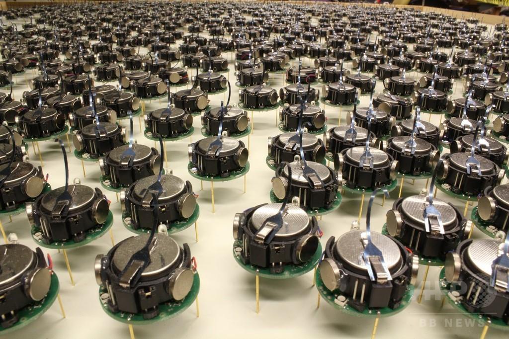 1000台規模で協調し動くロボット開発、米ハーバード大
