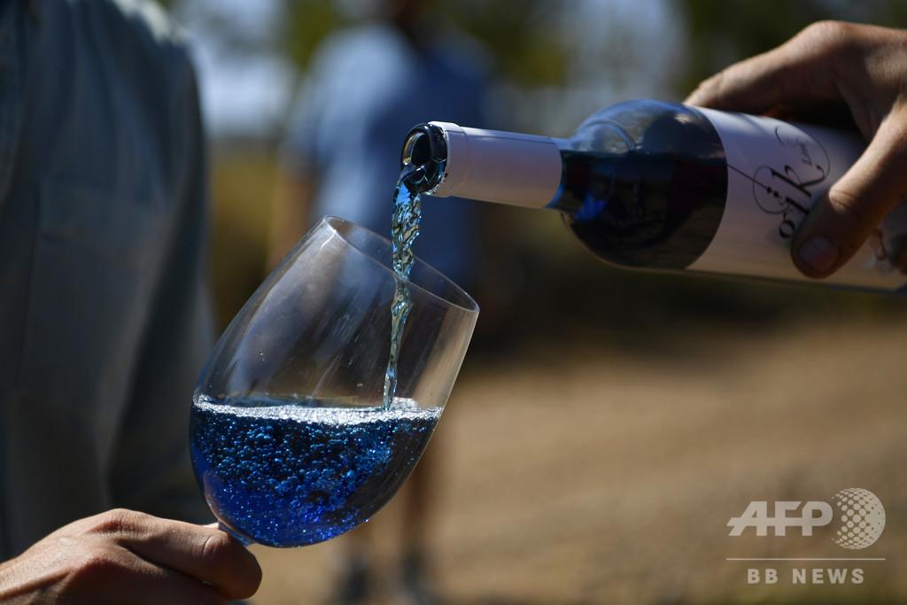 「青ワイン」で業界に新風、スペイン学生スタートアップ企業の冒険【再掲】