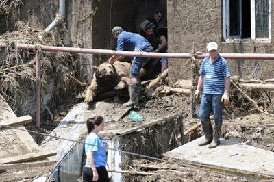 ジョージアの洪水、死者14人 動物園の動物は半分以上犠牲に