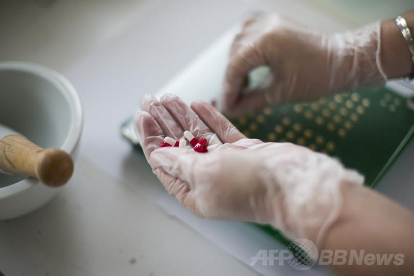 イモガイの毒に鎮痛効果、新たな鎮痛薬開発に期待 豪研究
