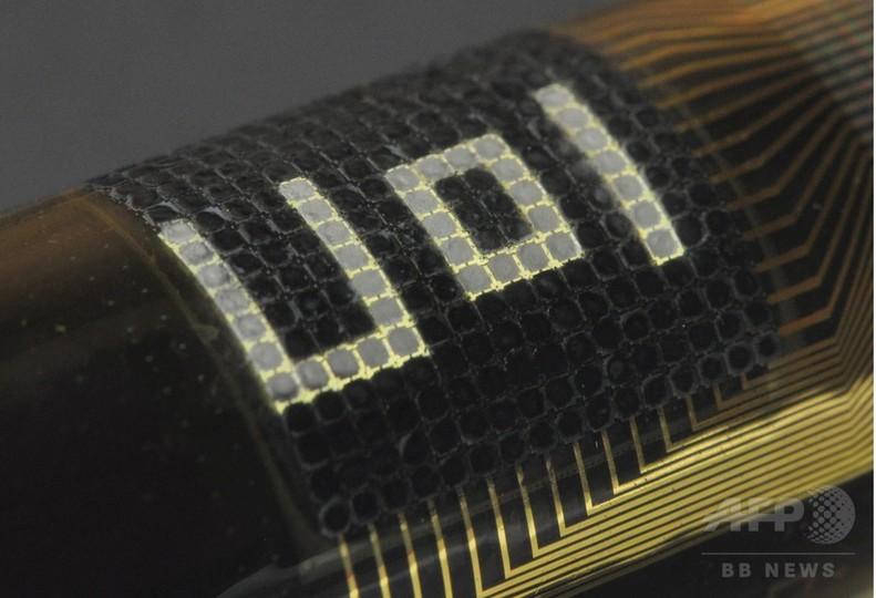 タコの擬態をヒントにした新カモフラージュ素材、米科学者ら開発