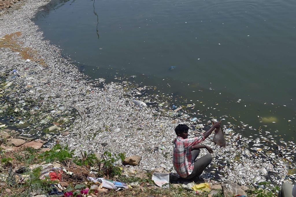 2012年の世界の死因、約4分の1が環境関連 WHO