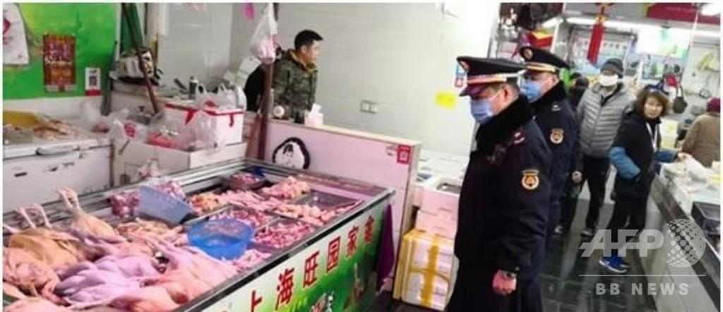 生きた鳥類の違法販売、取り締まりを強化 上海市当局