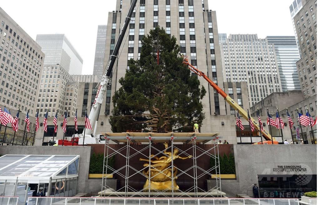 NYロックフェラーセンターにクリスマスツリー設置