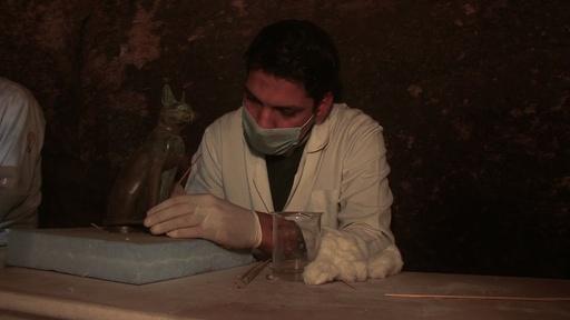 動画:猫のミイラや銅像など発見、エジプト古代都市サッカラの遺跡