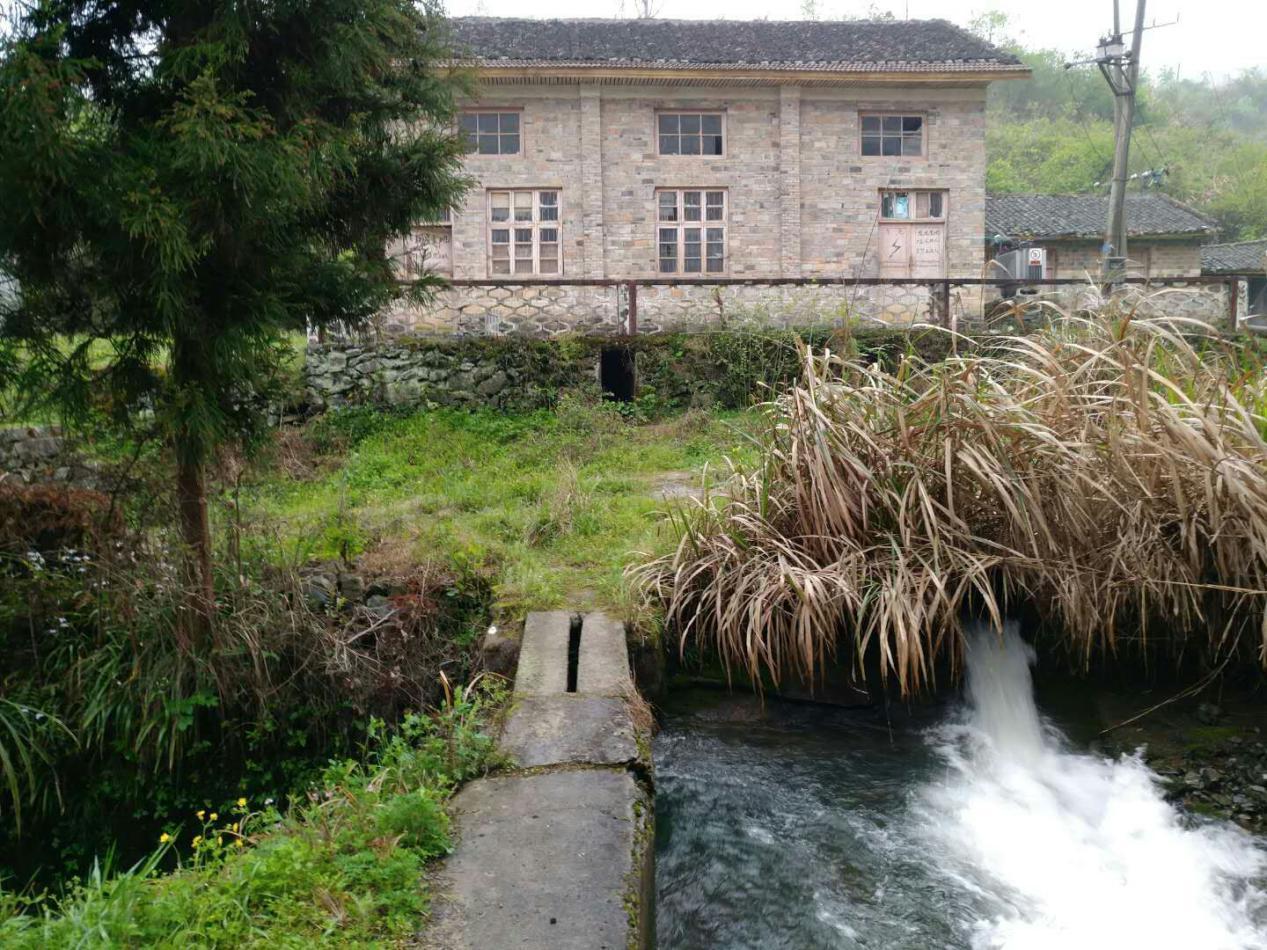 ダム撤去でチュウゴクオオサンショウウオ保護 中国・張家界市