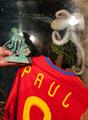 「予言ダコ」パウル、スペイン代表入り? 背番号は「8」