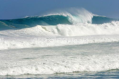 「死のトリオ」、海へのリスクを科学者が警告