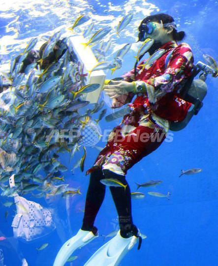 オタリアの書き初めに振り袖ダイバー、水族館で新春イベント