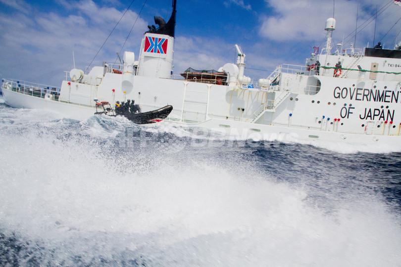 シー・シェパード、調査捕鯨船に新たな妨害