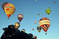 色鮮やかなバルーンが大空へ、熱気球欧州選手権