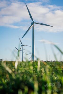 デンマーク、消費電力の半分弱が風力 世界最高を更新