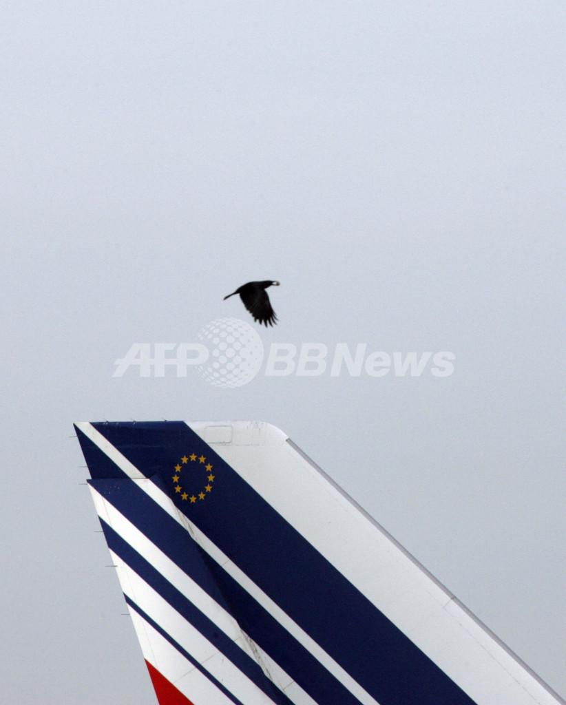マドリードの空港で、「大型の鳥類との衝突」への警戒呼びかけ