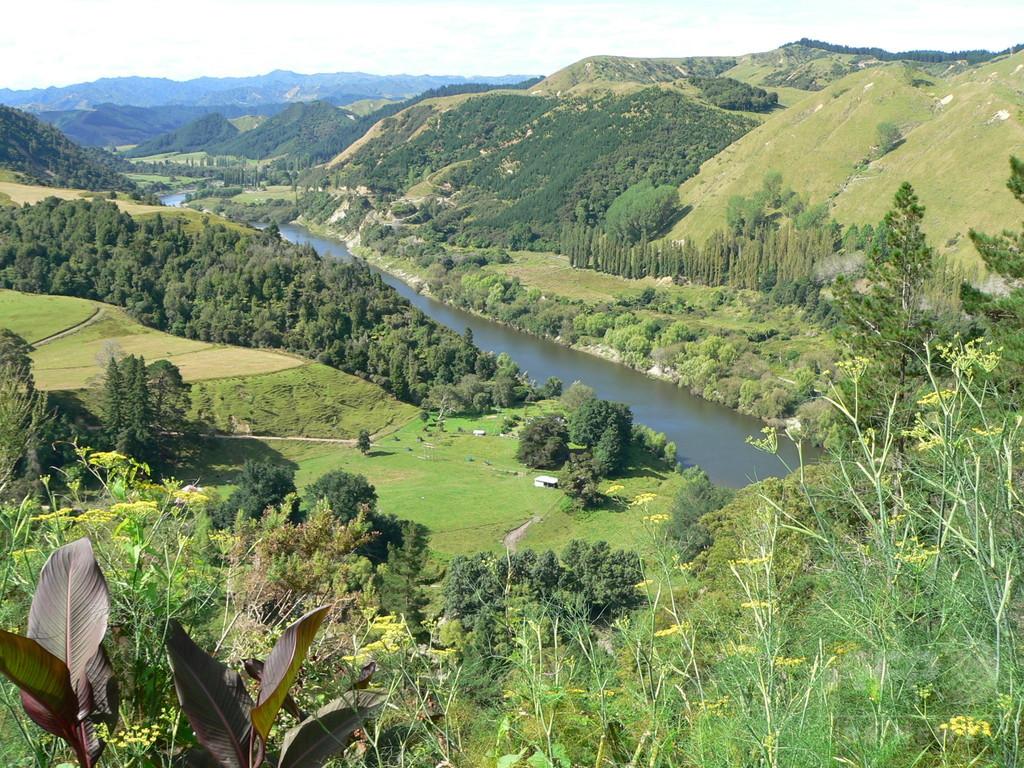 森で迷った女性、母乳で飢えしのぎ生還 ニュージーランド