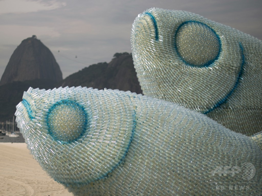 水族館展示予定の魚、1万匹以上死ぬ ブラジル