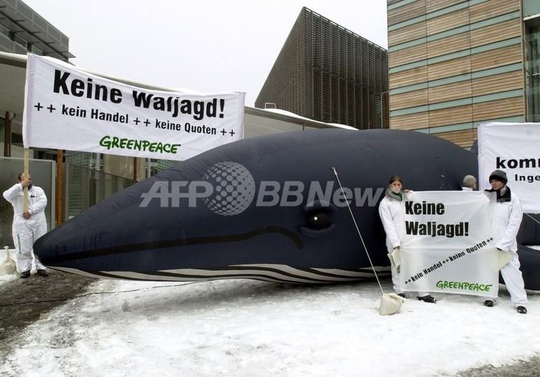 アイスランドとノルウェーが日本への鯨肉輸出を再開