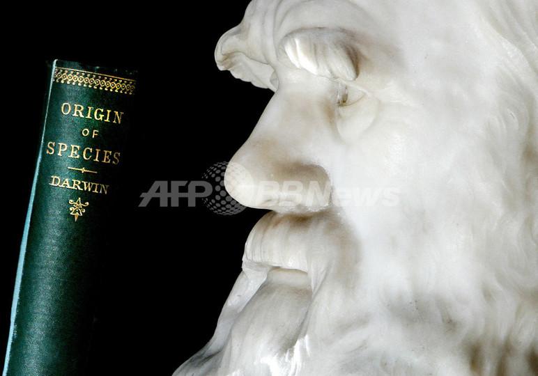 「種の起源」から150年、バチカンで来年 進化論に関する会議
