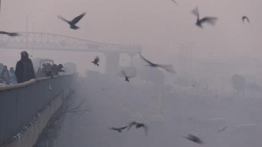 動画:パキスタンの冬は視界不良、スモッグ立ち込める朝