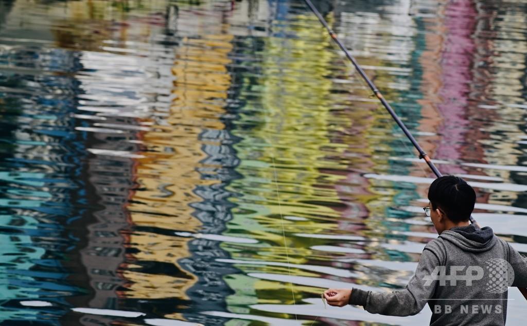 【今日の1枚】水面鮮やか、釣りの腕前も?