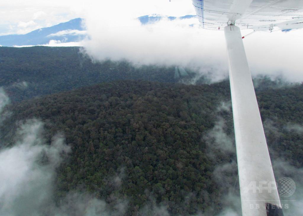 ヘリ墜落で不明の兵士、2週間ぶり生存確認 インドネシア