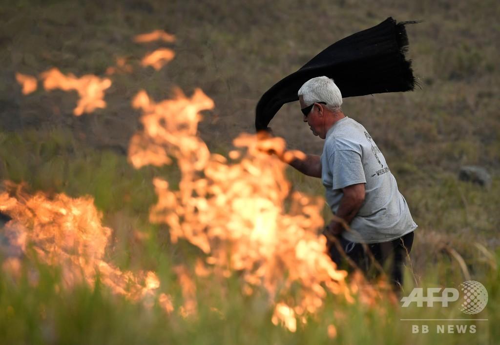 大麻草守ろうと「迎え火」か、新たな森林火災起こした男を逮捕 豪
