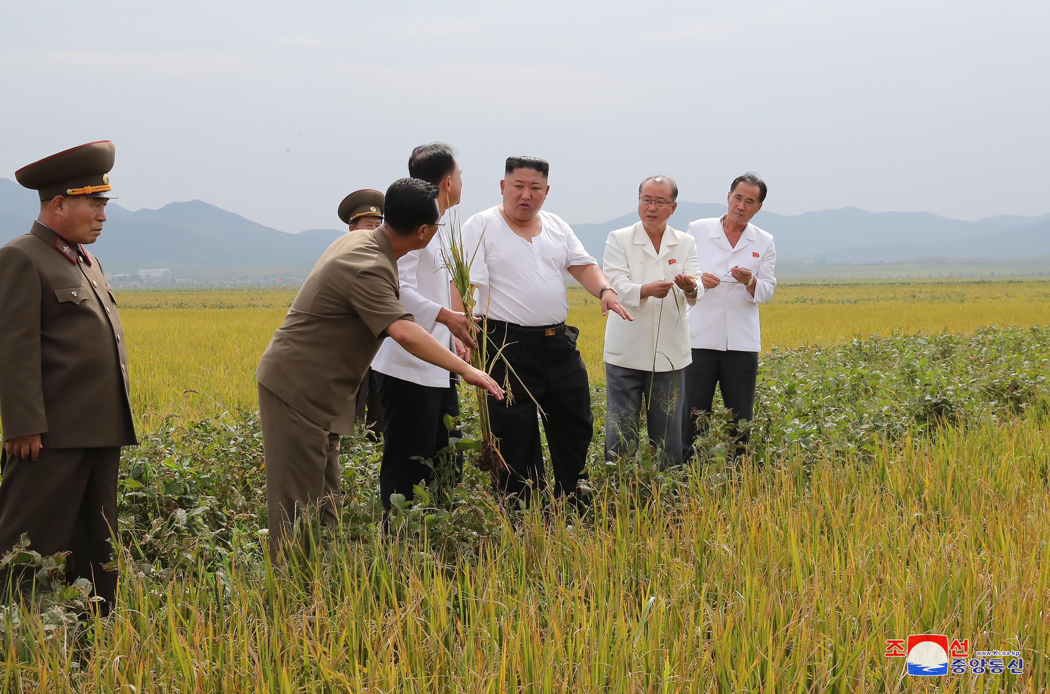 金正恩氏、黄海北道の洪水被害の復旧現場を視察