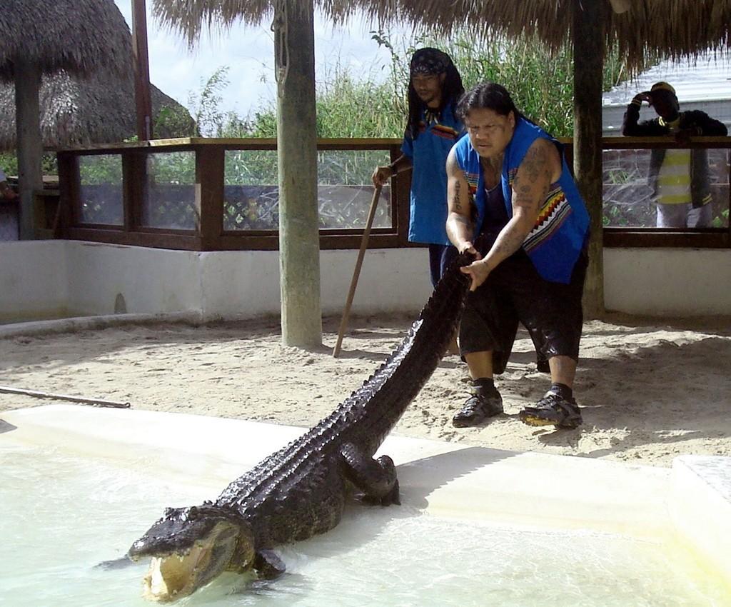 先住民最後のワニ・レスラーが引退、米フロリダ州