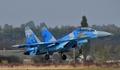 合同軍事訓練で戦闘機墜落、操縦士2人死亡 ウクライナ当局