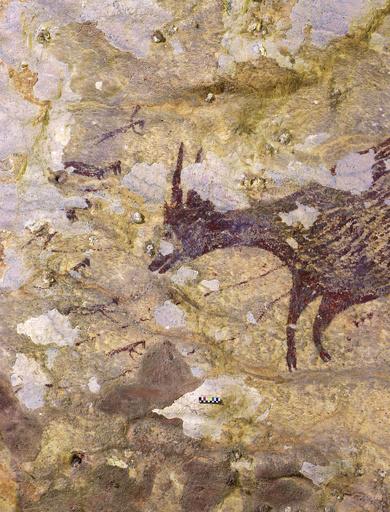 世界最古の具象画か、狩猟描いた4万4000年前の洞窟壁画 インドネシア