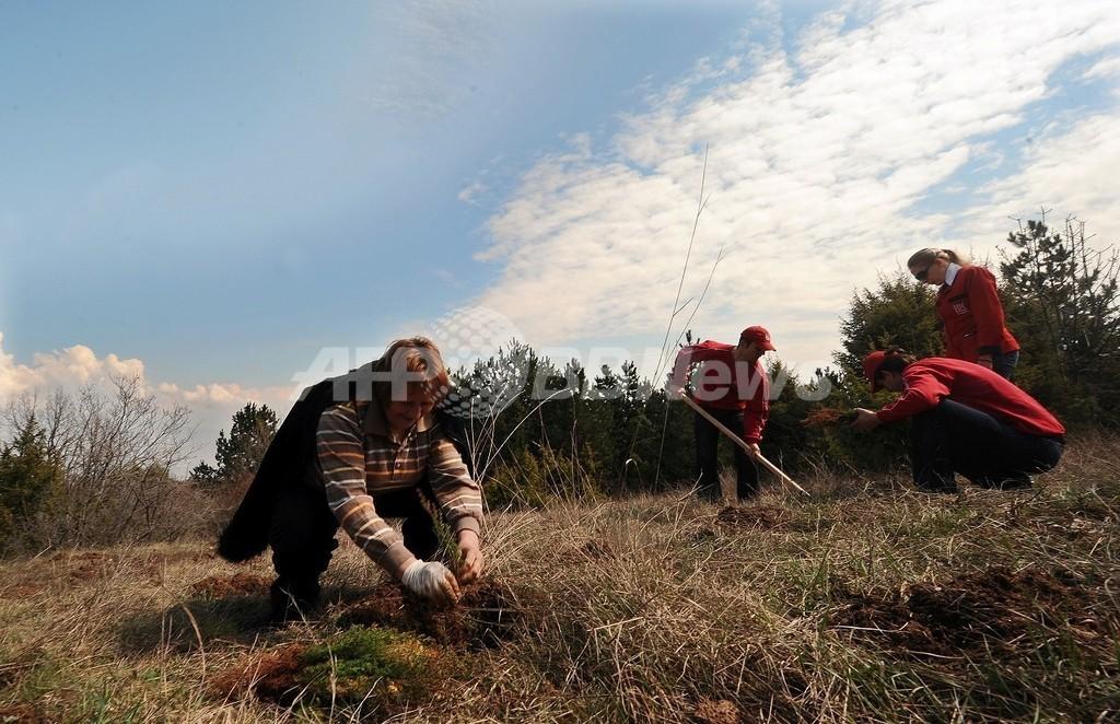 植林は温暖化防止にほとんど貢献しない、カナダ研究