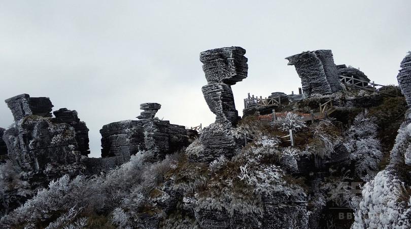 貴州省の梵浄山、世界遺産に登録 固有種の宝庫