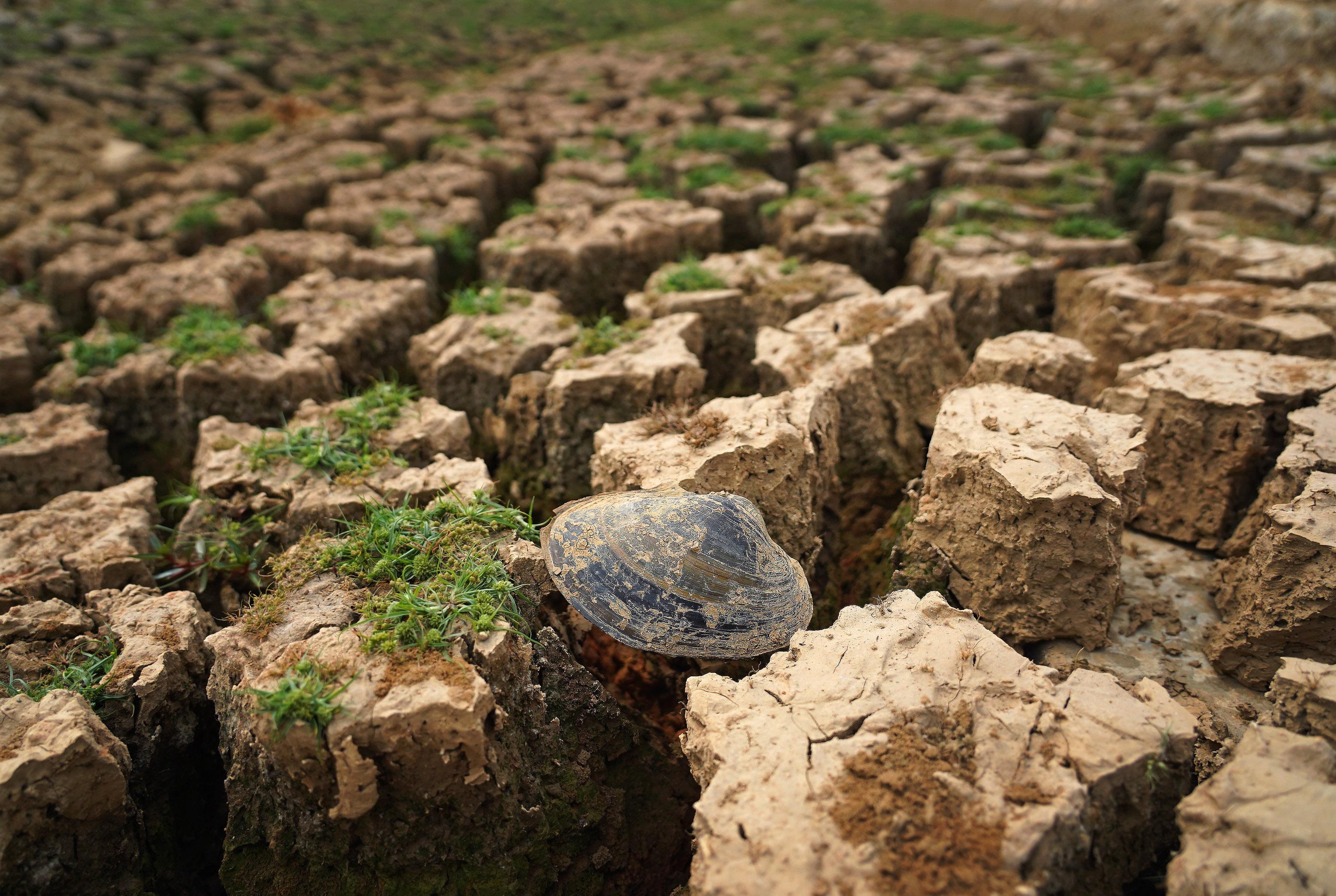 中国・江西省各地で干ばつ被害 水不足深刻に