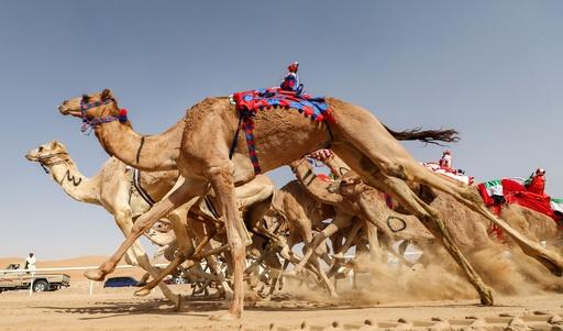 ラクダ操るのはロボット、砂漠でフェスティバル UAE