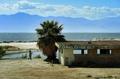 消えゆく湖、「環境的時限爆弾」にも 米加州ソルトン湖