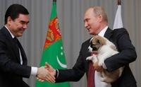 プーチン大統領、犬を贈呈される 中央アジア原産の牧羊犬