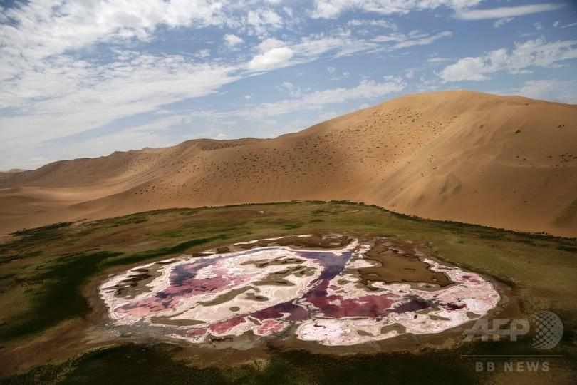 砂漠 ゴビ モンゴル国ゴビ砂漠での「Tsetsii Wind