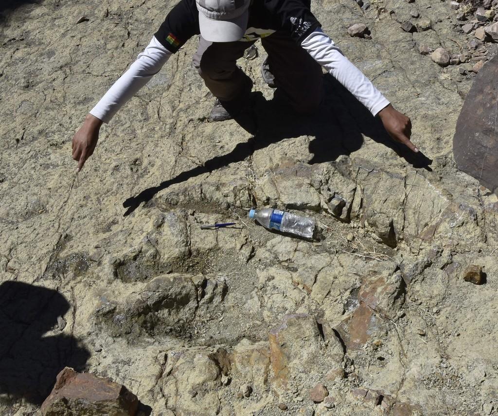 化石の聖地で恐竜の足跡たどる、ボリビア