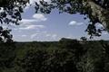 アマゾン油田開発へ着手表明、森林保護基金集まらず エクアドル