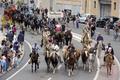 数千頭の動物が街を歩く、仏マルセイユ