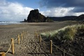 「ブタにも劣る」英国人観光客、不品行で国外退去の危機 NZ