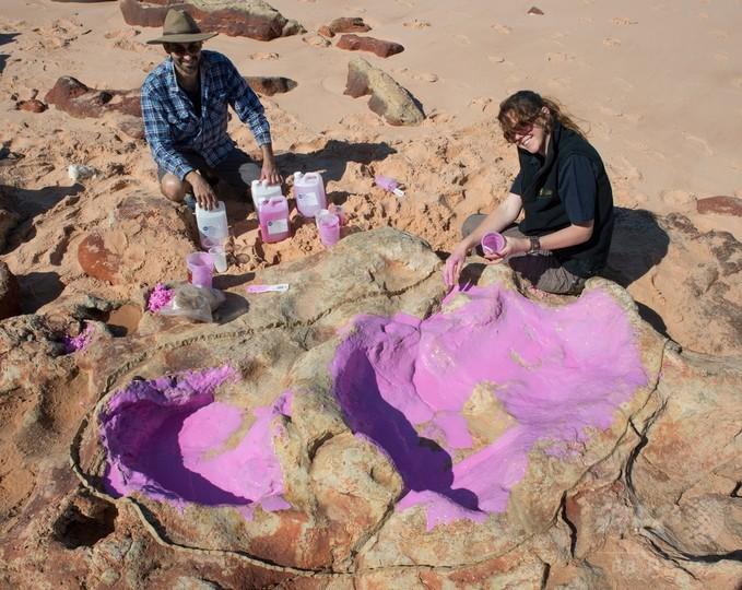 恐竜21種の足跡発見、「前代未聞」の規模 豪西部