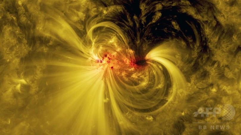 太陽観測衛星SDOが見た磁場の活動領域「AR12665」 NASA