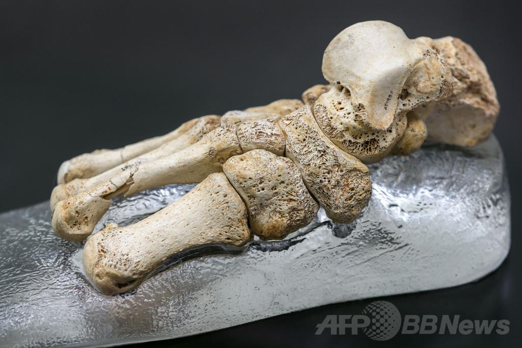 80万年前の古代人の足跡、英国で発見 研究