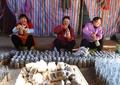 キノコ栽培で村の増収図る  雲南・巍山で最盛期