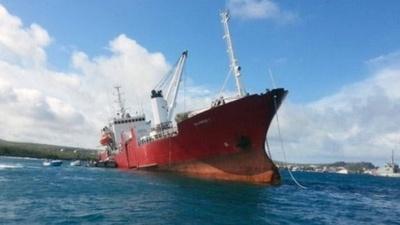 ガラパゴス諸島で貨物船が座礁、当面の環境リスクは「なし」